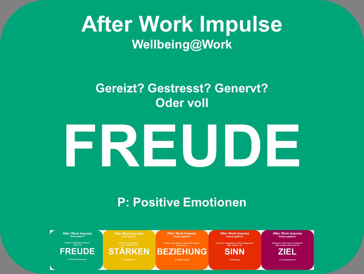 Positive Emotionen im Beruf, PERMA-Modell